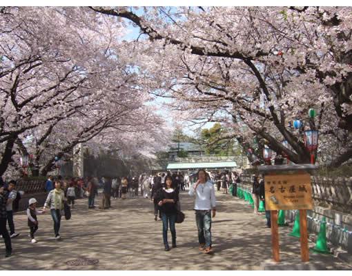 名古屋城の入り口