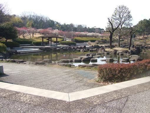 大高緑地公園の日本庭園